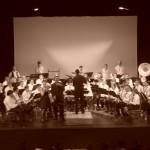 Concert 2011 3